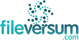 Logo Design for FileVersum