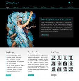 Website Design for Femida.us